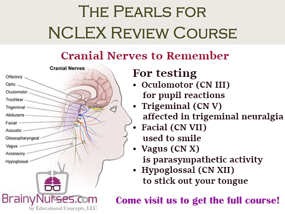 Neurological NCLEX Review