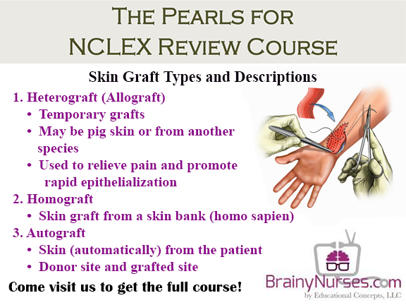 Integumentary NCLEX Review